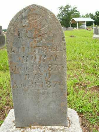 MITCHELL, A.M. - Boone County, Arkansas | A.M. MITCHELL - Arkansas Gravestone Photos