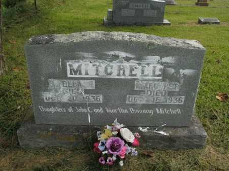 MITCHELL, MARGARET - Boone County, Arkansas | MARGARET MITCHELL - Arkansas Gravestone Photos