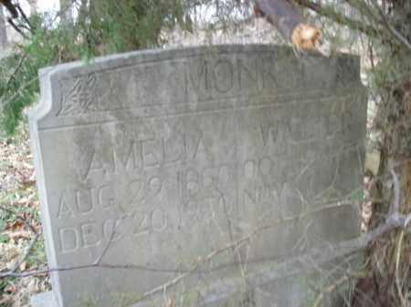 MONK, WALTER - Boone County, Arkansas   WALTER MONK - Arkansas Gravestone Photos