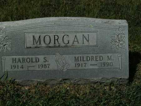 MORGAN, HAROLD S. - Boone County, Arkansas | HAROLD S. MORGAN - Arkansas Gravestone Photos
