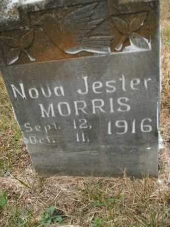 MORRIS, NOVA JESTER - Boone County, Arkansas   NOVA JESTER MORRIS - Arkansas Gravestone Photos