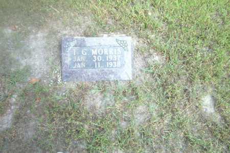 MORRIS, T.G. - Boone County, Arkansas   T.G. MORRIS - Arkansas Gravestone Photos
