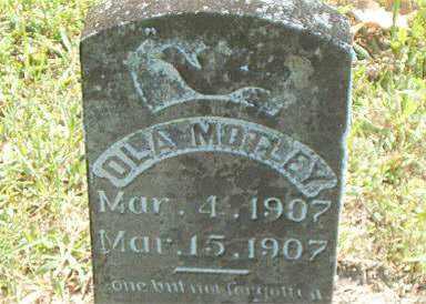 MOTLEY, OLA - Boone County, Arkansas | OLA MOTLEY - Arkansas Gravestone Photos