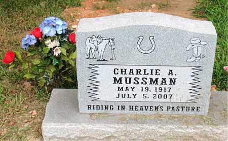 MUSSMAN, CHARLIE A - Boone County, Arkansas | CHARLIE A MUSSMAN - Arkansas Gravestone Photos