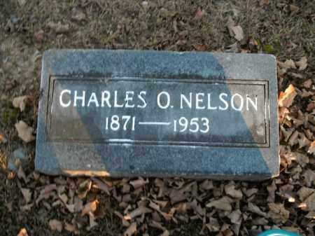NELSON, CHARLES O. - Boone County, Arkansas | CHARLES O. NELSON - Arkansas Gravestone Photos