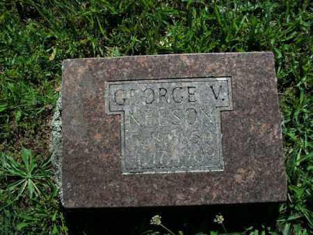 NELSON, GEORGE V. - Boone County, Arkansas   GEORGE V. NELSON - Arkansas Gravestone Photos