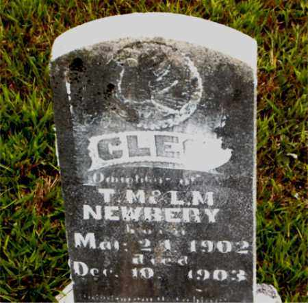 NEWBERRY, CLEO - Boone County, Arkansas | CLEO NEWBERRY - Arkansas Gravestone Photos