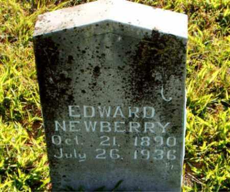 NEWBERRY, EDWARD - Boone County, Arkansas | EDWARD NEWBERRY - Arkansas Gravestone Photos