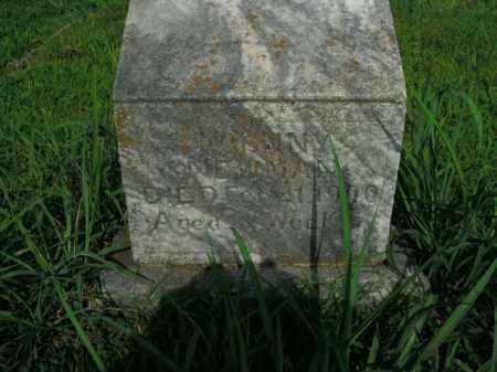 NEWMAN, JOHNNY - Boone County, Arkansas | JOHNNY NEWMAN - Arkansas Gravestone Photos