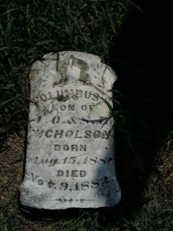 NICHOLSON, COLUMBUS - Boone County, Arkansas | COLUMBUS NICHOLSON - Arkansas Gravestone Photos
