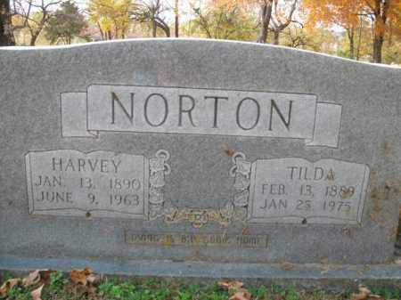 NORTON, TILDA - Boone County, Arkansas | TILDA NORTON - Arkansas Gravestone Photos