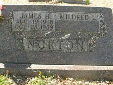 NORTON, JAMES HENRY - Boone County, Arkansas   JAMES HENRY NORTON - Arkansas Gravestone Photos