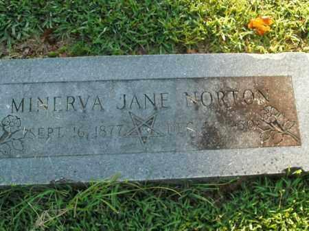 NORTON, MINERVA JANE - Boone County, Arkansas | MINERVA JANE NORTON - Arkansas Gravestone Photos