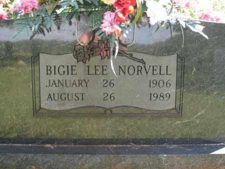 NORVELL, BIGIE LEE - Boone County, Arkansas | BIGIE LEE NORVELL - Arkansas Gravestone Photos