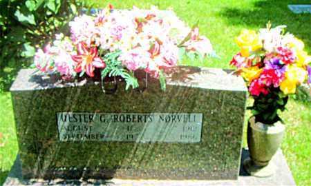 ROBERTS NORVELL, HESTER G. - Boone County, Arkansas | HESTER G. ROBERTS NORVELL - Arkansas Gravestone Photos