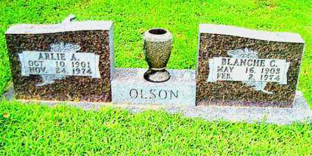 OLSON, BLANCHE  C. - Boone County, Arkansas | BLANCHE  C. OLSON - Arkansas Gravestone Photos