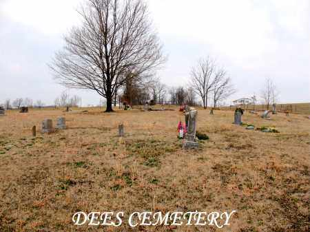 *DEES CEMETERY OVERVIEW,  - Boone County, Arkansas |  *DEES CEMETERY OVERVIEW - Arkansas Gravestone Photos