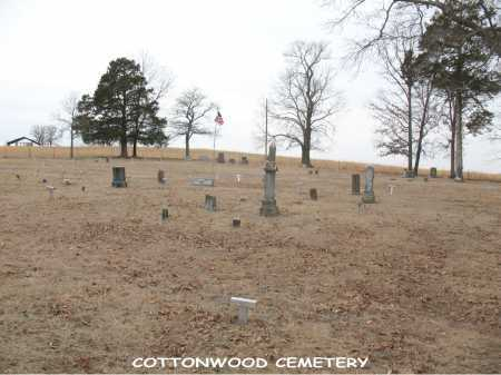 *COTTONWOOD CEMETERY OVERVIEW,  - Boone County, Arkansas |  *COTTONWOOD CEMETERY OVERVIEW - Arkansas Gravestone Photos
