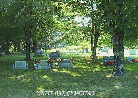 *WHITE OAK CEMETERY OVERVIEW,  - Boone County, Arkansas |  *WHITE OAK CEMETERY OVERVIEW - Arkansas Gravestone Photos