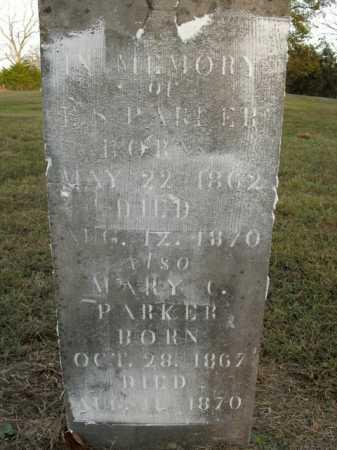 PARKER, E.S. - Boone County, Arkansas | E.S. PARKER - Arkansas Gravestone Photos