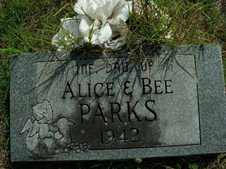 PARKS, INFANT DAUGHTER - Boone County, Arkansas | INFANT DAUGHTER PARKS - Arkansas Gravestone Photos
