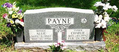 PAYNE, CHARLIE - Boone County, Arkansas   CHARLIE PAYNE - Arkansas Gravestone Photos