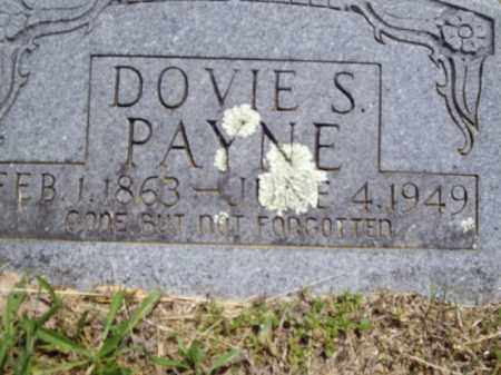 PAYNE, DOVIE S. - Boone County, Arkansas | DOVIE S. PAYNE - Arkansas Gravestone Photos