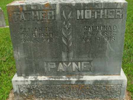 PAYNE, CALDONA D. - Boone County, Arkansas   CALDONA D. PAYNE - Arkansas Gravestone Photos