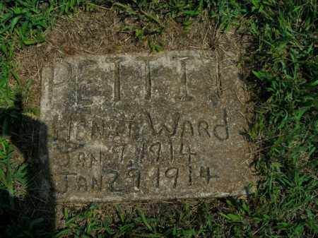 PETTIT, HENRY WARD - Boone County, Arkansas | HENRY WARD PETTIT - Arkansas Gravestone Photos