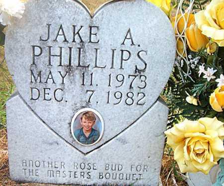 PHILLIPS, JAKE A - Boone County, Arkansas   JAKE A PHILLIPS - Arkansas Gravestone Photos