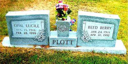 PLOTT, REED BERRY - Boone County, Arkansas | REED BERRY PLOTT - Arkansas Gravestone Photos