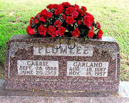 PLUMLEE, CARRIE - Boone County, Arkansas | CARRIE PLUMLEE - Arkansas Gravestone Photos