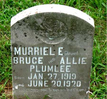 PLUMLEE, MURRIEL E - Boone County, Arkansas | MURRIEL E PLUMLEE - Arkansas Gravestone Photos