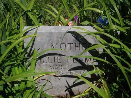PLUMLEE, OLLIE BELL - Boone County, Arkansas | OLLIE BELL PLUMLEE - Arkansas Gravestone Photos