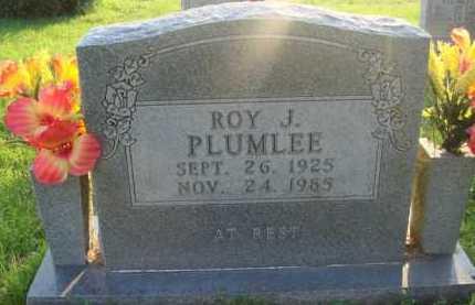 PLUMLEE, ROY J. - Boone County, Arkansas | ROY J. PLUMLEE - Arkansas Gravestone Photos