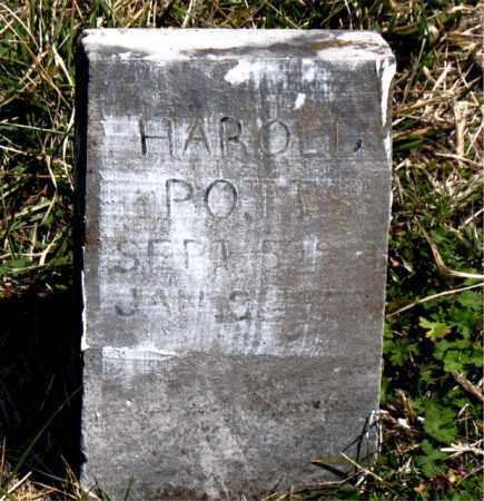 POTTS, HAROLD M - Boone County, Arkansas | HAROLD M POTTS - Arkansas Gravestone Photos