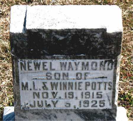POTTS, NEWEL WAYMOND - Boone County, Arkansas | NEWEL WAYMOND POTTS - Arkansas Gravestone Photos
