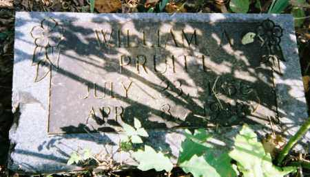PRUITT, WILLIAM A - Boone County, Arkansas | WILLIAM A PRUITT - Arkansas Gravestone Photos