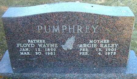 PUMPHREY, ARGIE - Boone County, Arkansas | ARGIE PUMPHREY - Arkansas Gravestone Photos