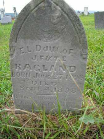 RAGLAND, E.L. - Boone County, Arkansas | E.L. RAGLAND - Arkansas Gravestone Photos