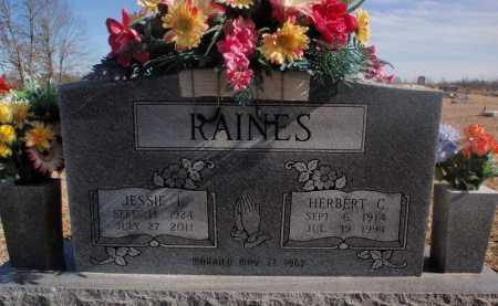 RAINES, HERBERT C - Boone County, Arkansas | HERBERT C RAINES - Arkansas Gravestone Photos