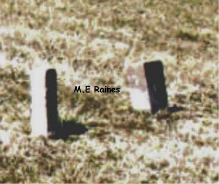 RAINES, M. E. - Boone County, Arkansas | M. E. RAINES - Arkansas Gravestone Photos