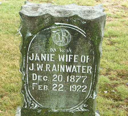 RAINWATER, JANIE - Boone County, Arkansas | JANIE RAINWATER - Arkansas Gravestone Photos