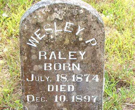 RALEY, WESLEY  P. - Boone County, Arkansas | WESLEY  P. RALEY - Arkansas Gravestone Photos