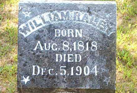 RALEY, WILLIAM - Boone County, Arkansas | WILLIAM RALEY - Arkansas Gravestone Photos