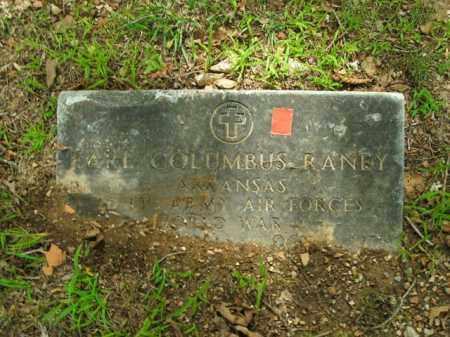 RANEY  (VETERAN WWII), EARL COLUMBUS - Boone County, Arkansas | EARL COLUMBUS RANEY  (VETERAN WWII) - Arkansas Gravestone Photos