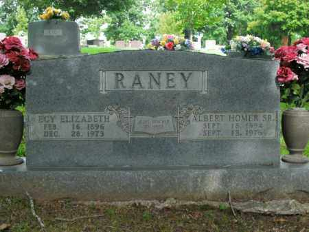 RANEY, ECY ELIZABETH - Boone County, Arkansas | ECY ELIZABETH RANEY - Arkansas Gravestone Photos