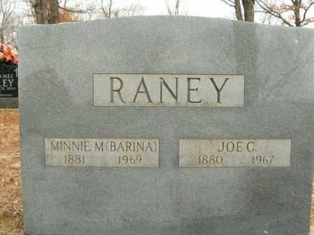 RANEY, MINNIE M. - Boone County, Arkansas   MINNIE M. RANEY - Arkansas Gravestone Photos
