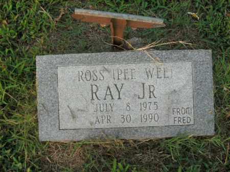 RAY, JR, ROSS - Boone County, Arkansas | ROSS RAY, JR - Arkansas Gravestone Photos