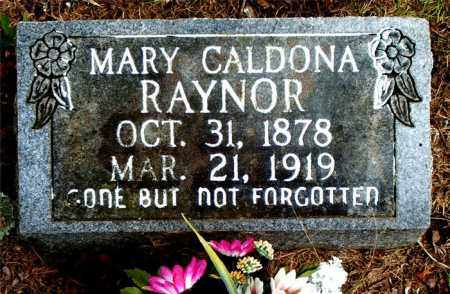RAYNOR, MARY CALDONA - Boone County, Arkansas   MARY CALDONA RAYNOR - Arkansas Gravestone Photos